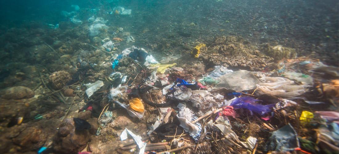 Cómo va la guerra contra la marea de plástico