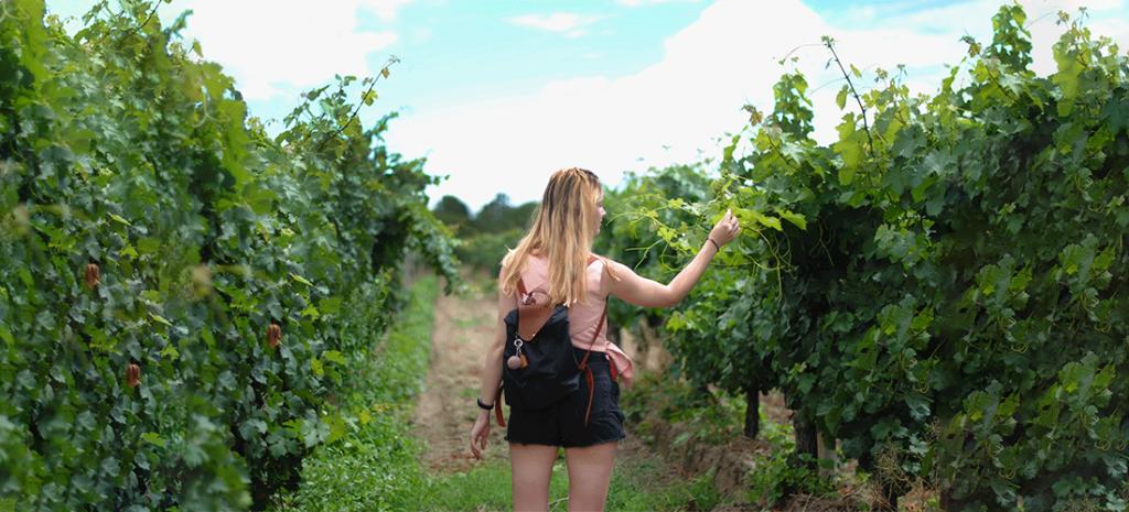 Mujer joven en una plantación ecológica de Ibiza