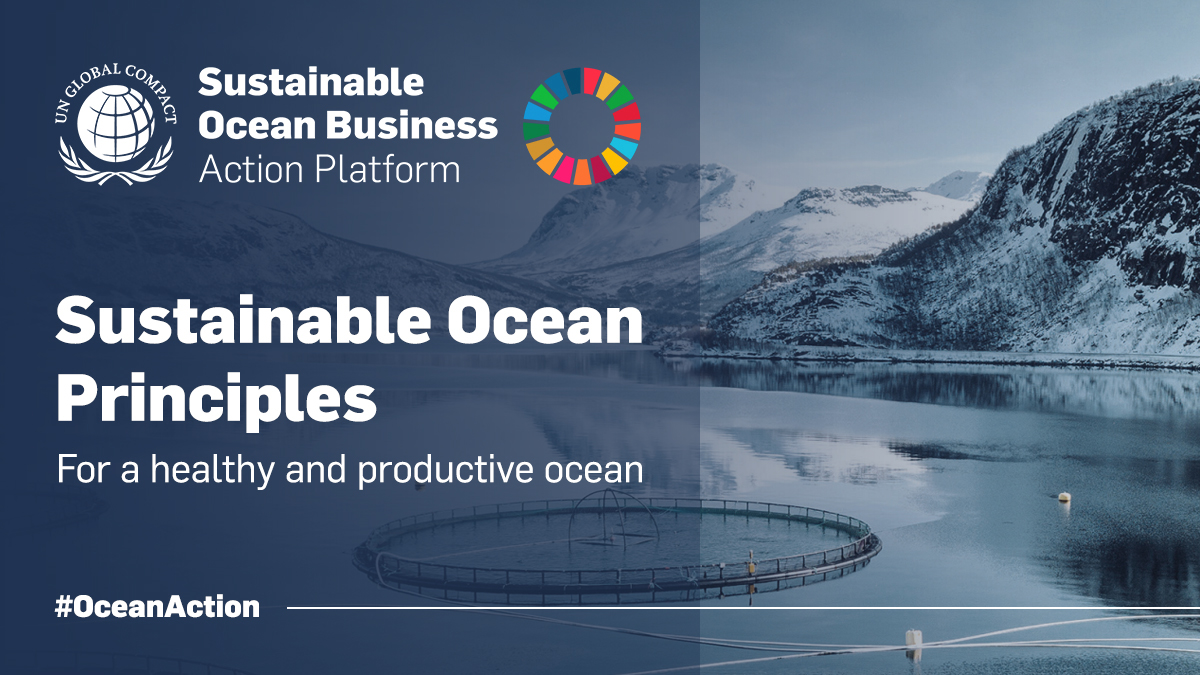 Adhesión United Nations Global Compact's Sustainable Ocean Principles